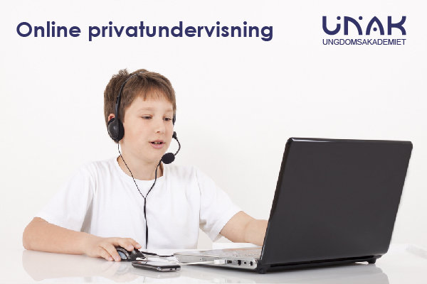 Onine privatundervisning